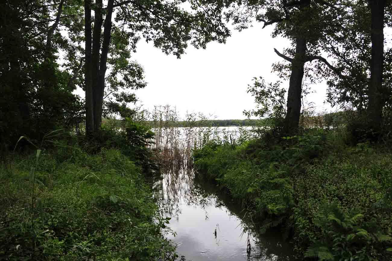 リヤウシ湖1