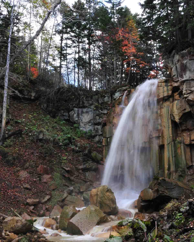 白藤の滝2